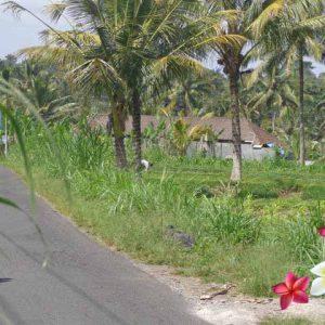 Jual Tanah Ubud JTU 690