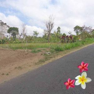 Jual Tanah Ubud JTU 853